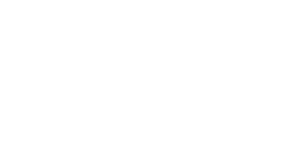 Dr. Schweppe logo Kite Media project