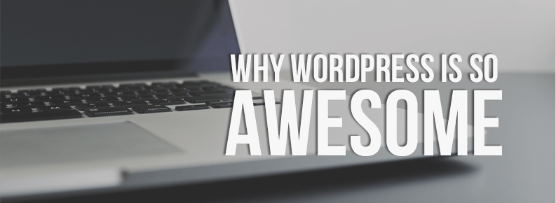 kite media why wordpress is so awesome