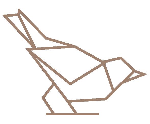 Sparrow & Co logo Kite Media project