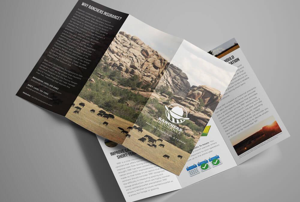 Ranchers Insurance Brochure Design