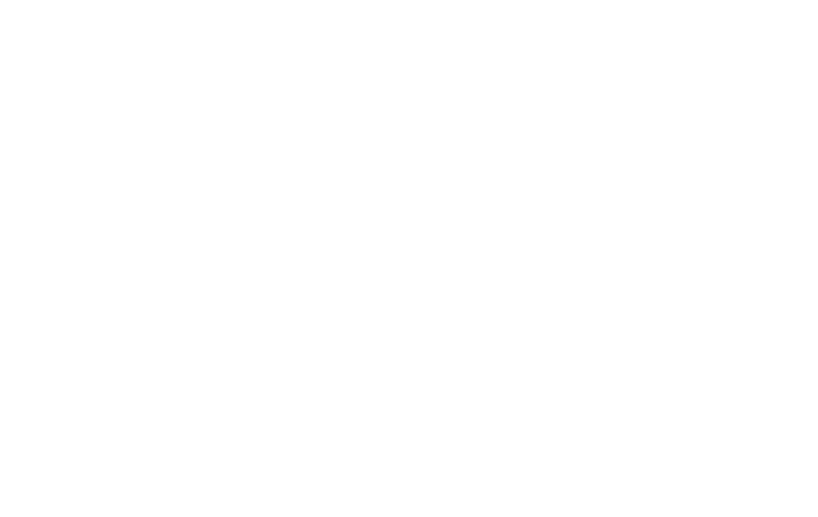 Golden State Chem-Dry logo Kite Media project